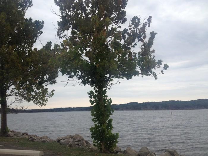 1. Veteran's Lake:  Sulphur