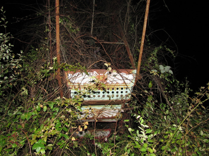 14. This ride car that's almost overgrown with weeds.