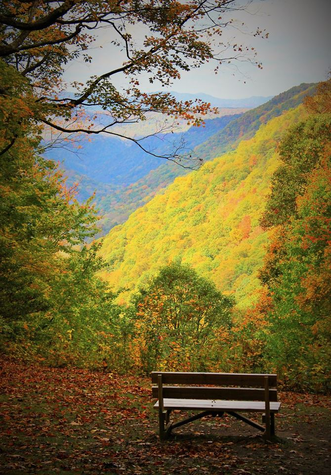 4. Look at the bright colors in this shot from the overlook at Babcock State Park.
