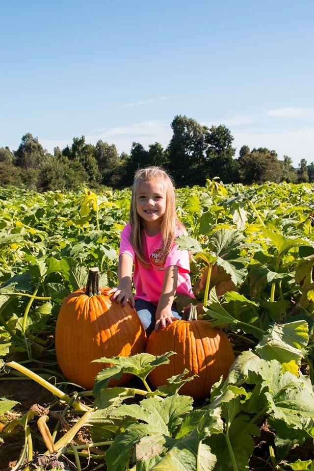 1. Pumpkin Hollow