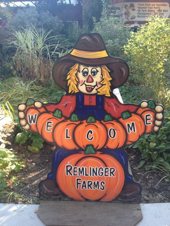 1. Remlinger Farms, Carnation