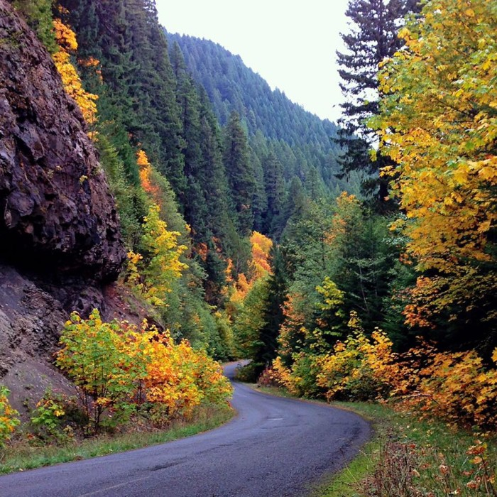 15. Going for a relaxing fall drive along the Lewis River - as captured by Richard Tessari.