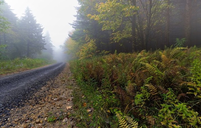 10. Rick Morrison took this picture of Dolly Sods.