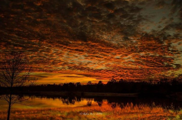 6. Sunset in Saline County by Robin Berry