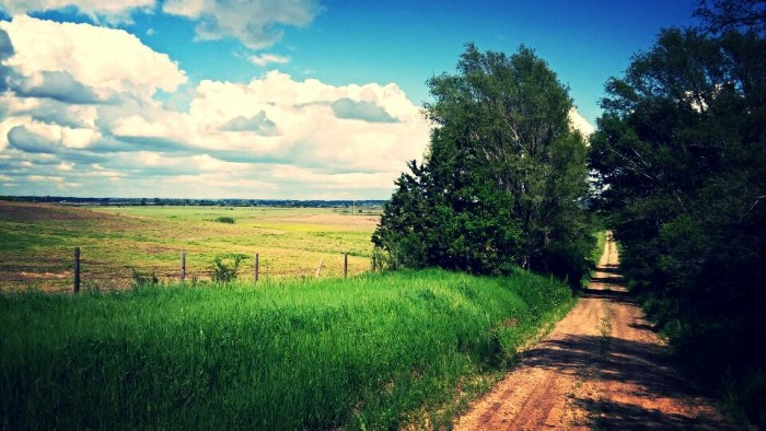 16. This beautiful dirt road in Sarpy County was shot by Shannon Peyrot.
