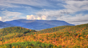 You'll Be Blown Away By These 6 Amazing State Forests In West Virginia
