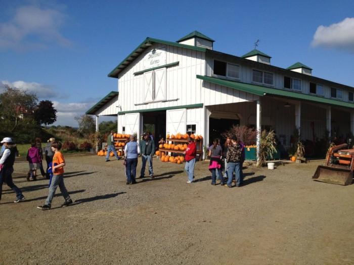 5. Shaffner Farms, Montesano