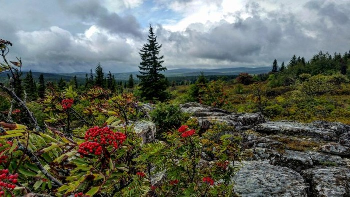 1. Shelley Miller got this shot of Dolly Sods.