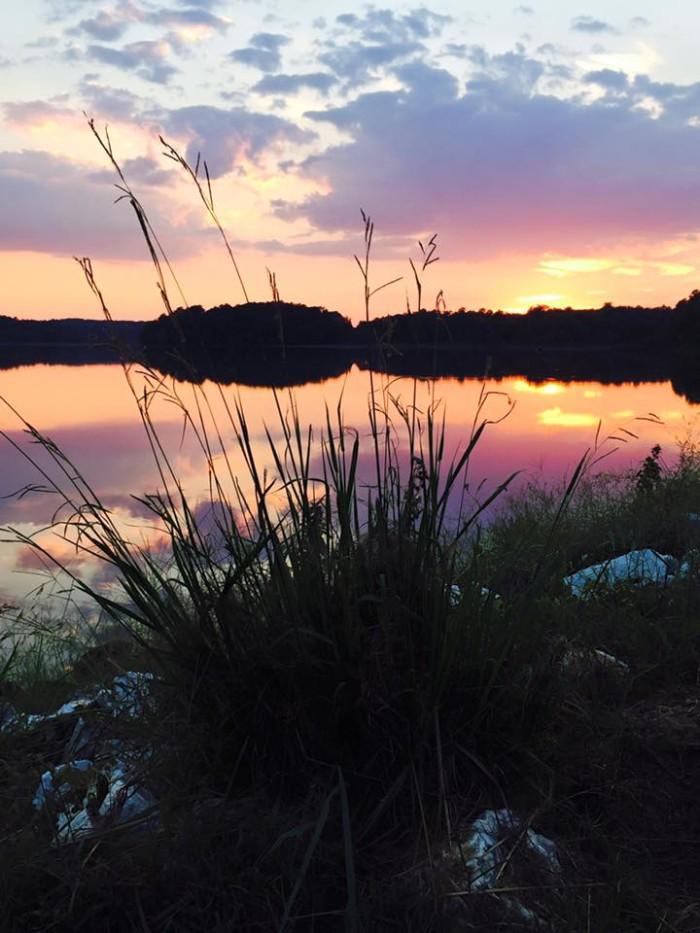 15. Bragg Lake by Sherri Pierce Rice