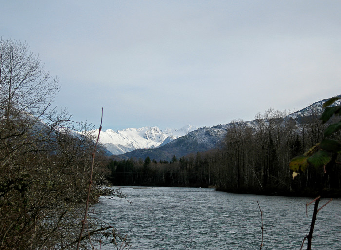 5. Skagit River