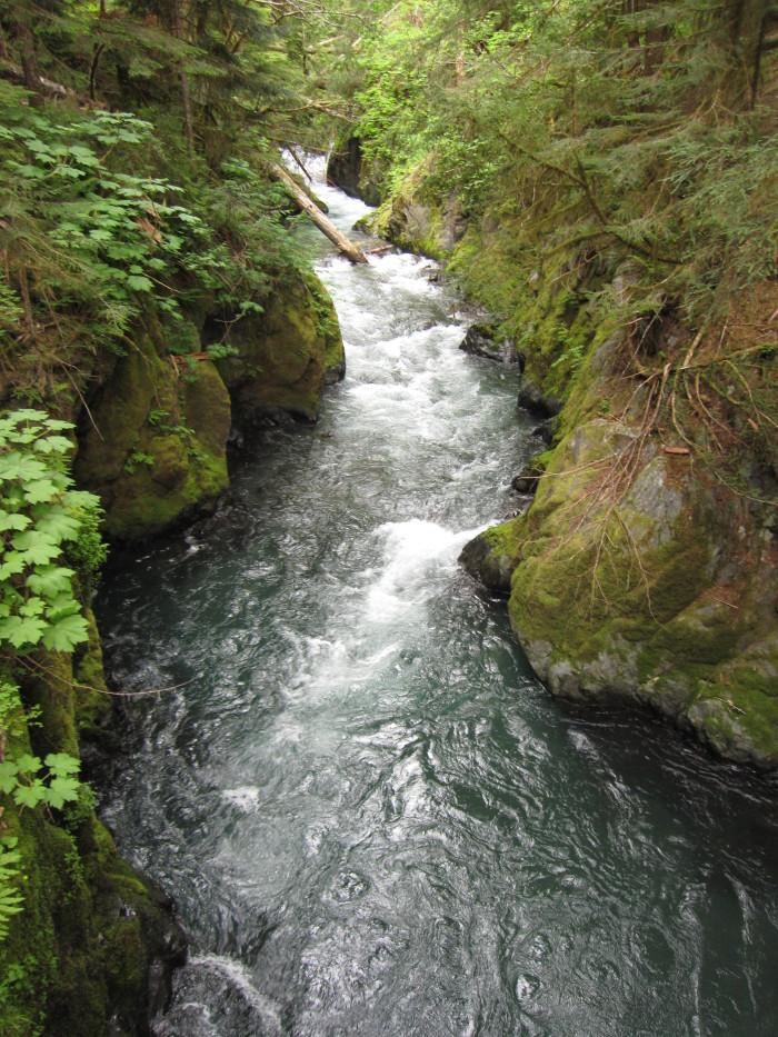 13. Skokomish River