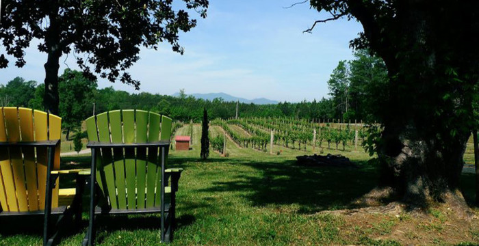 6. Visit one of North Carolina's award-winning vineyards.