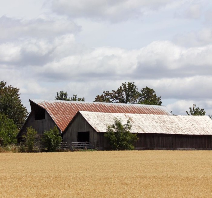 13.  Sue Collins sent us this captivating shot of a barn in the small town of Ridgefield!