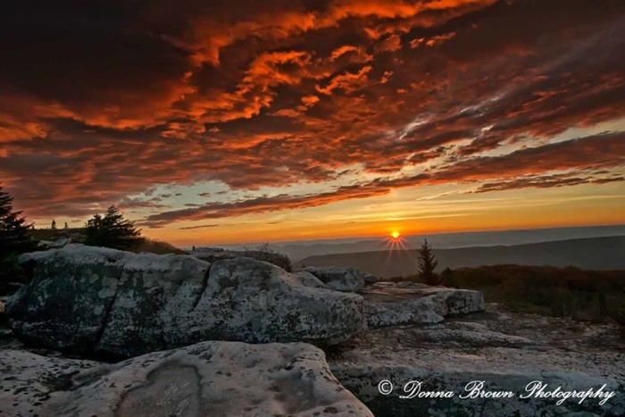6. This sunrise at Bear Rocks Preserve submitted by Donna Icenhower-Brown