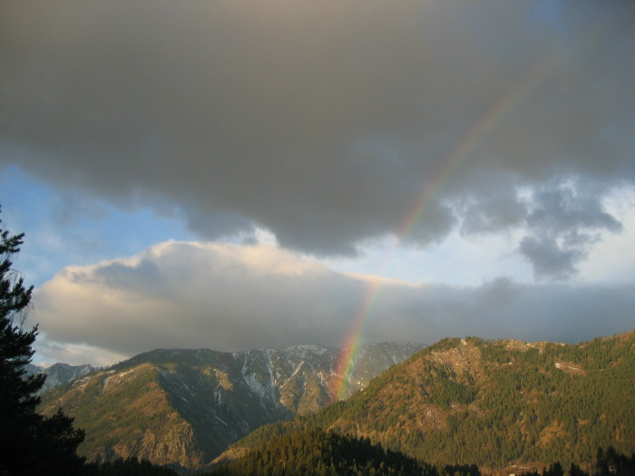 6. A lucky photo to capture in Tumwater Canyon!