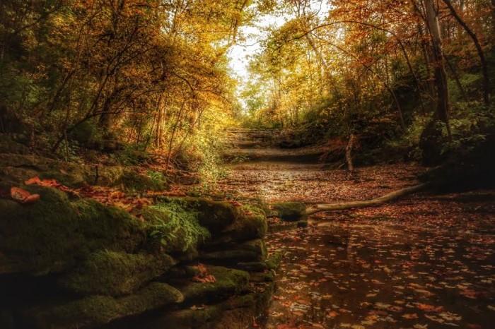 3. Fallsville Falls in early October