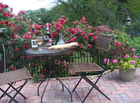 15. Visit a vineyard and linger over a shared bottle.