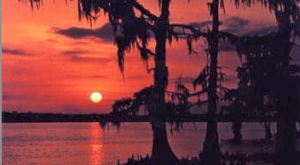 14 More Amazing Reader Submitted Photos of Louisiana