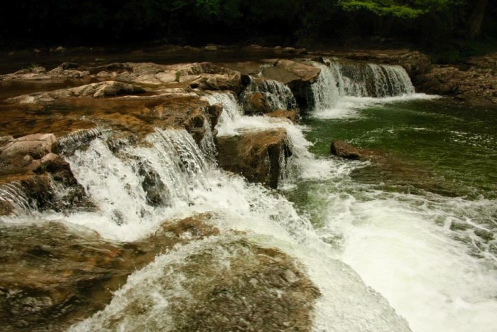 6. This picture of Whitaker Falls.