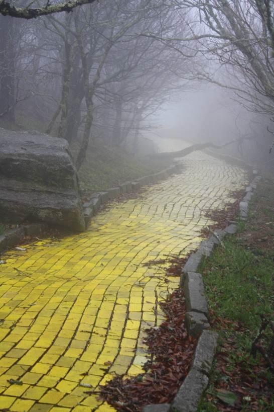 3. Foggy brick road