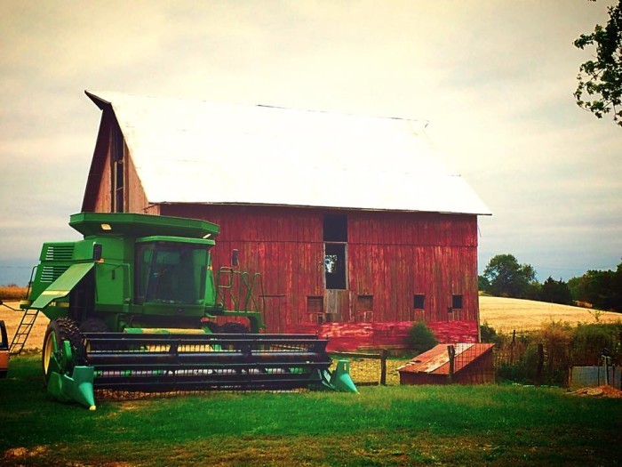 11. Kristie took this picture on her farm in Carrollton.