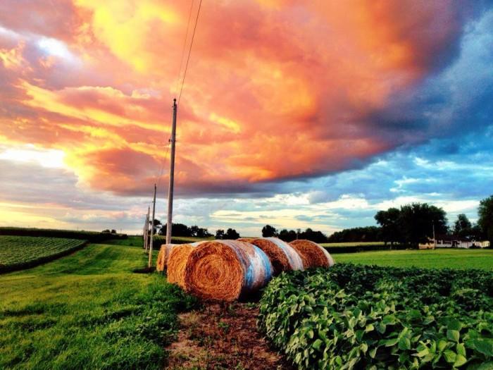 18. Tiffani really stumbled upon a beautiful rural scene in Andover, Illinois.