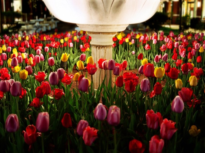 12. These tulips in this lighted flower pot are beautiful at night.