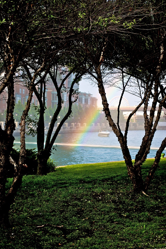 1. Check out this great shot of a rainbow that appears to be going into the Chicago River.
