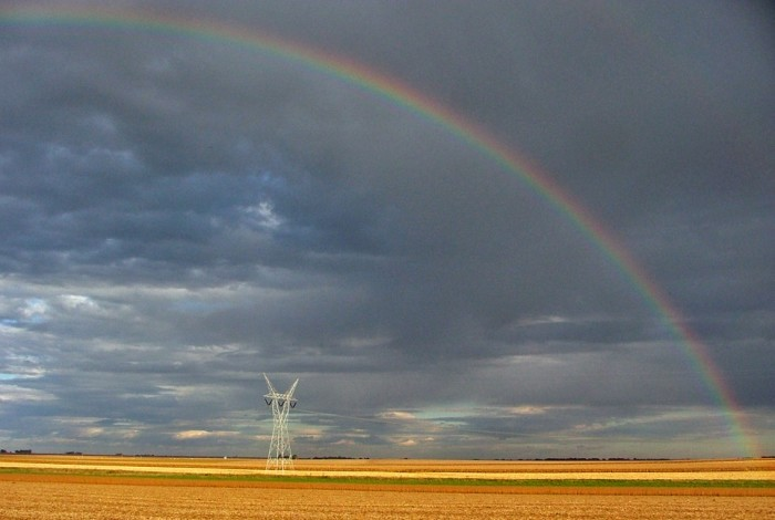2. This rainbow appeared over soybeans and cornfields in rural Lexington, Illinois.