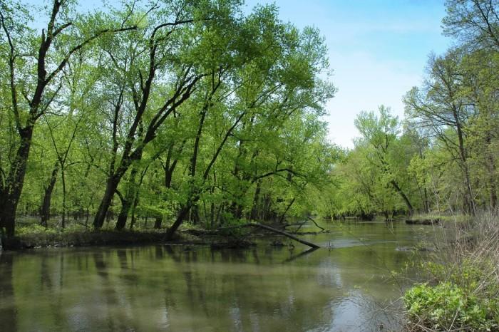 6. Sangamon River