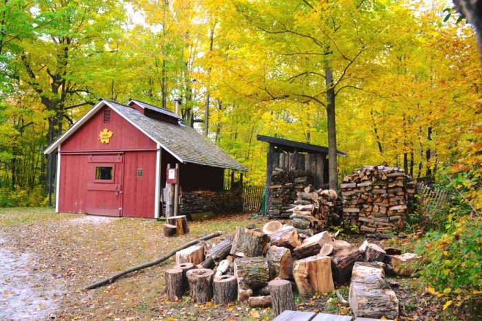 2. Wood is rent for winter in Washington County.