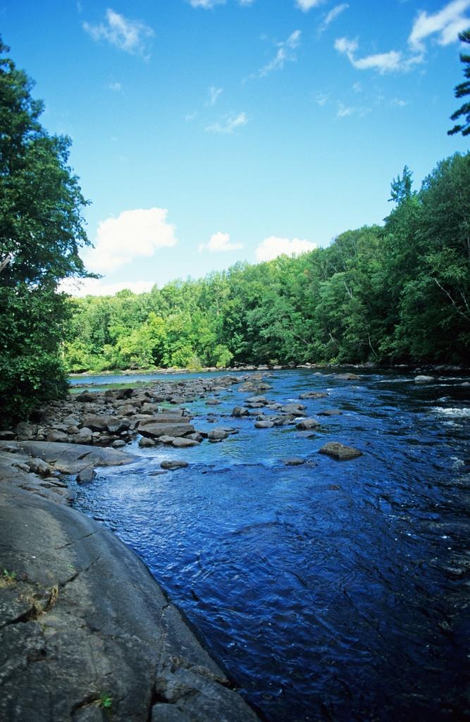 6. Peshtigo River State Forest