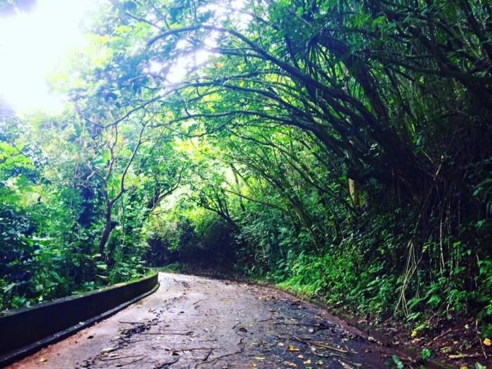 1) Old Pali Road