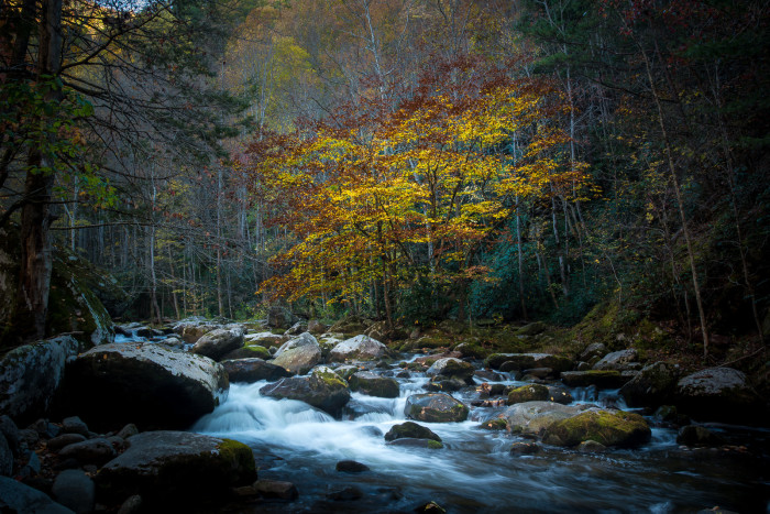 1) Tennessee has gorgeous scenery year 'round