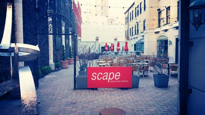 1.2. scape, St. Louis
