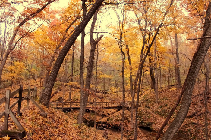 10. Not to mention the amazing state parks.