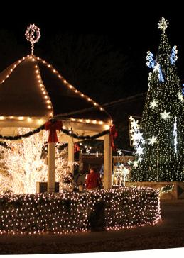 7. Check out Christmas in Canton.