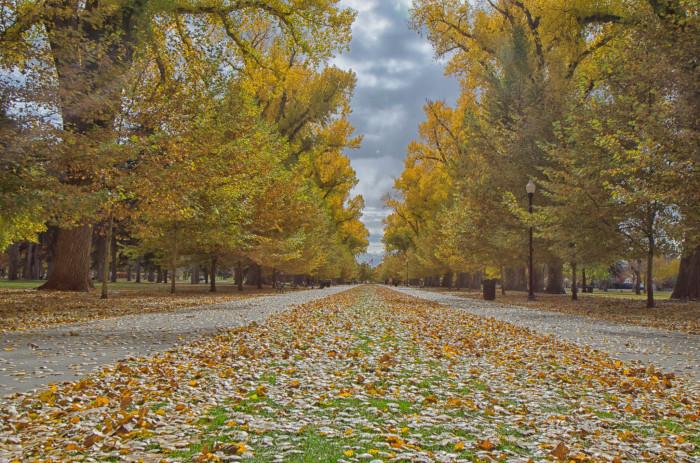 3. Liberty Park Main Walkway