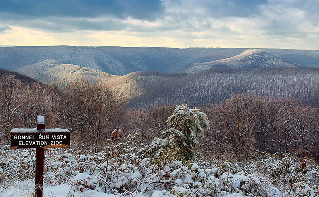 6. And of course, the natural scenery in Pennsylvania is incredible. Valleys, forests, trees, streams, fields: we have it all.