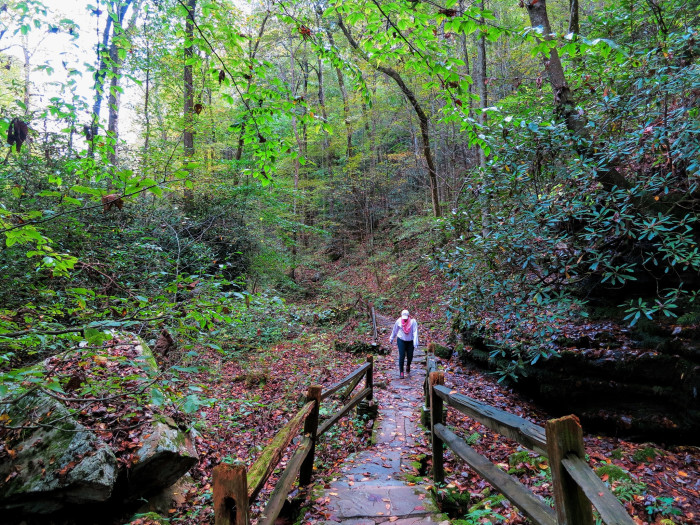 9. A walk through nature in Tryon.