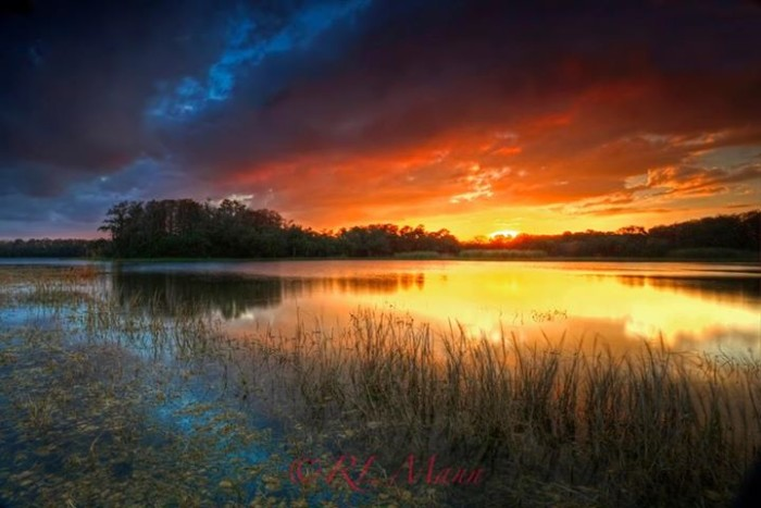 3. Rick Mann shared this sunset from Harns Marsh Preserve in Lehigh Acres