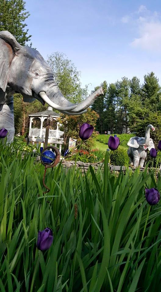 5. Count the elephants at Mister Ed's Elephant Museum in Orrtanna.