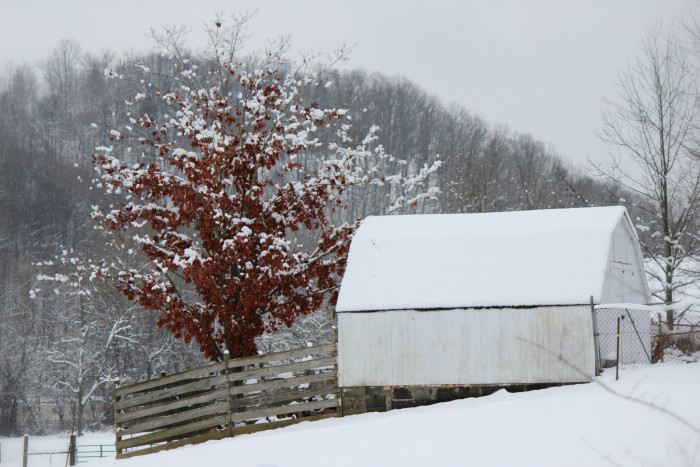 1. Snowfall paired with our rural landscapes will warm your heart.