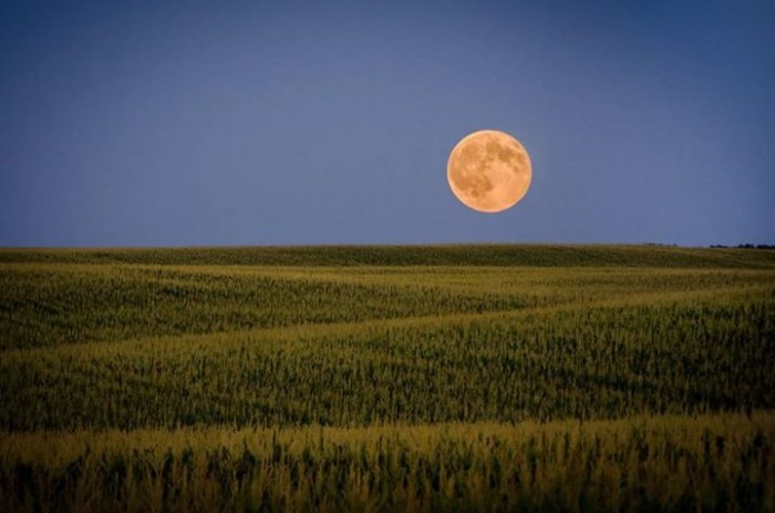 8. The super-sized moon as it floats over a field in Iowa
