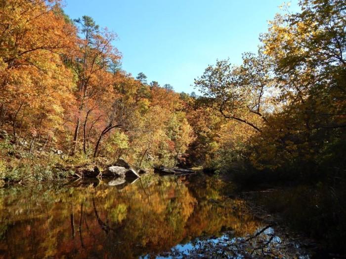 12.Paddy Creek Wilderness by BJ Norris.