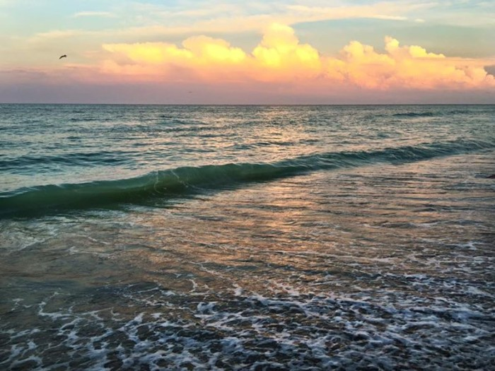 2. Thank you, Mark Warner, for this stunning shot of Jensen Beach.