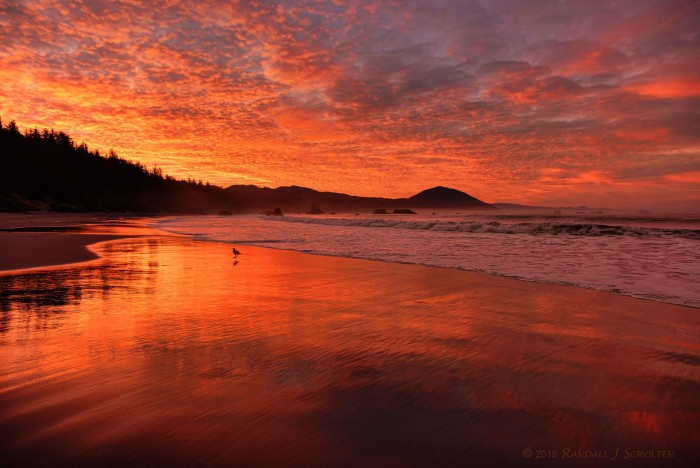 16. Sunrise in Port Orford, by Randy Scholten.