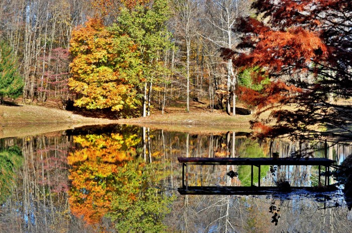 14. Check out the gorgeous reflection Steve Smith was able to capture of a private pond in Gibson County!