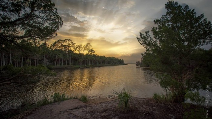 6. Thank you, Marty Fletcher, for this shot of Tomoka State Park...