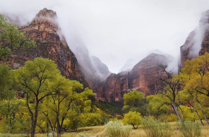 1. Instead of Zion National Park…